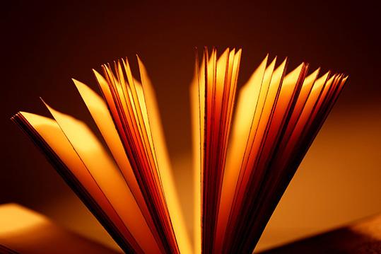 mieli_blogi_open-book-nettireso